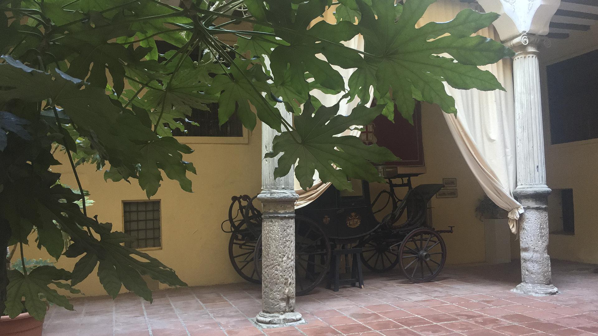 RMCZ patio 4